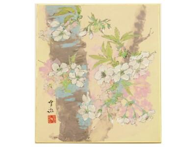 小川 幸治「上野の櫻」